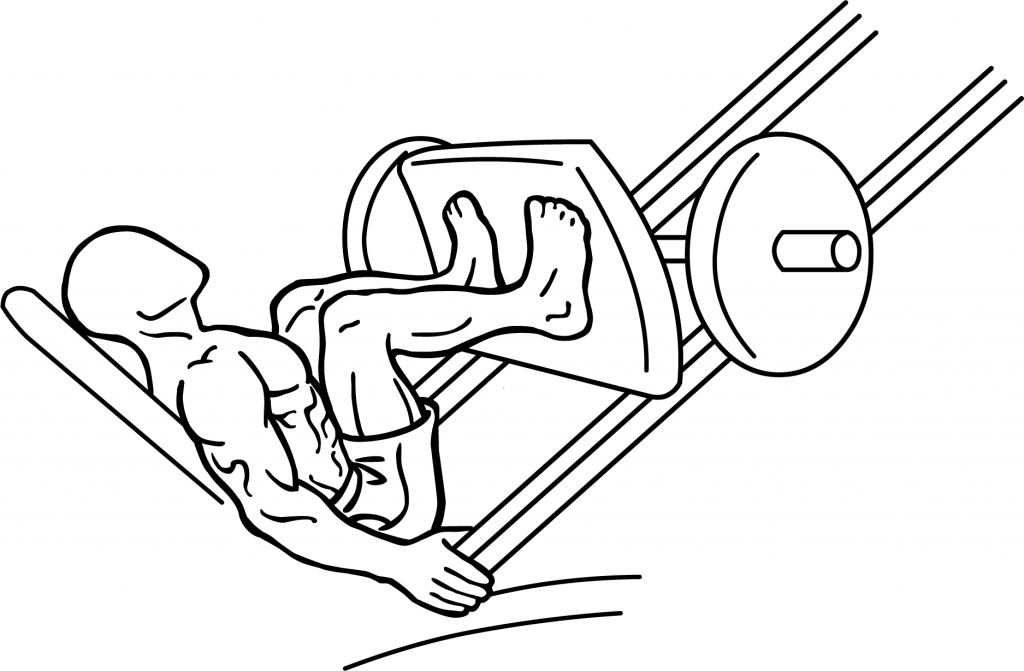 Overhead Press Machine Diagram Car Wiring Diagrams Explained